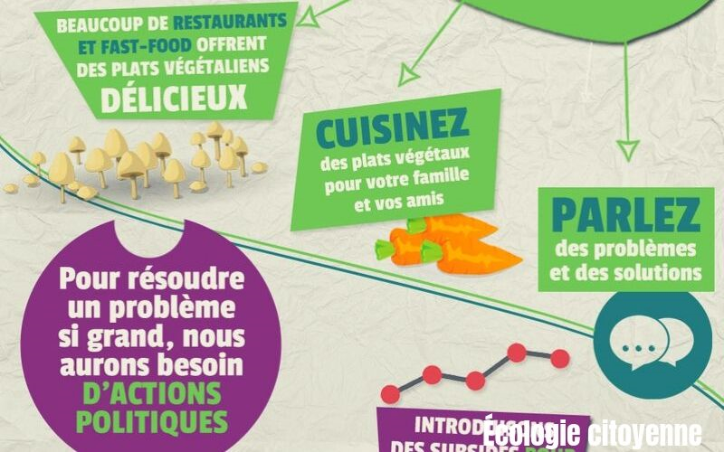 consommation-de-viande-infographie-par-interraction - ecologie citoyenne le blog- nous pouvons changer le monde