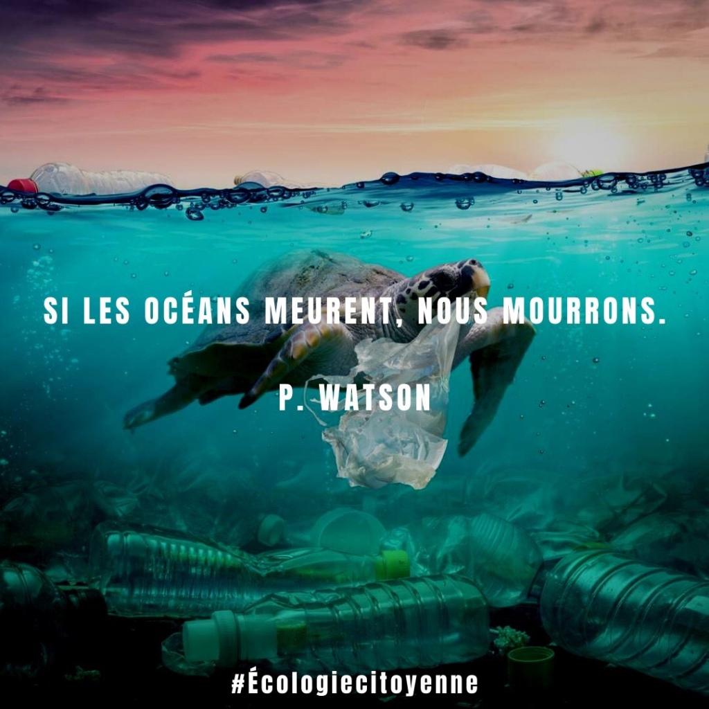 Si les océans meurent, nous mourrons.