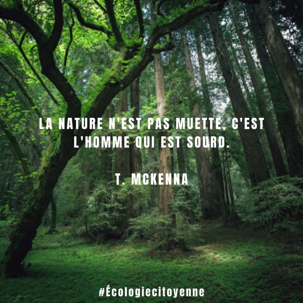La nature n'est pas muette