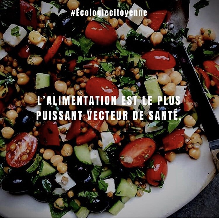 Alimentation est le plus puissant vecteur de santé